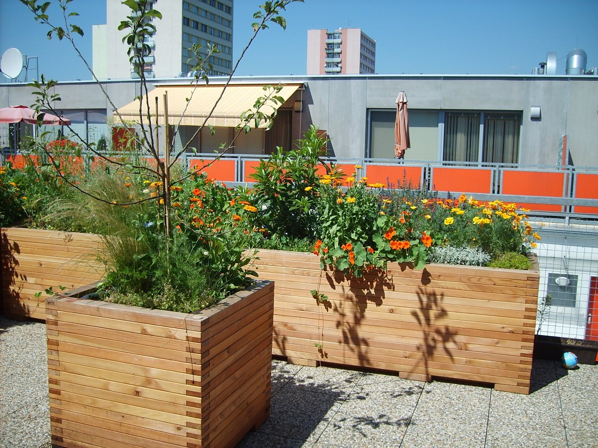 Krajarch - návrhy záhrad, realizácia záhrad, záhradná